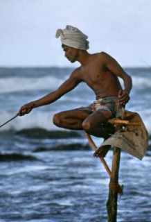 Sri | Lanka | Ceylan | Travel | Handicap